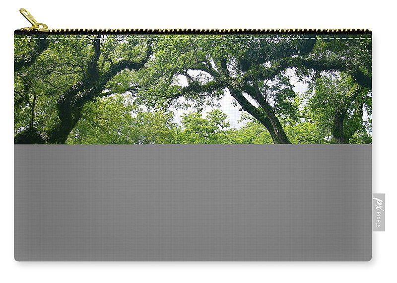 Tree Carry-all Pouch featuring the photograph Oak Alley Trees by Denise Mazzocco