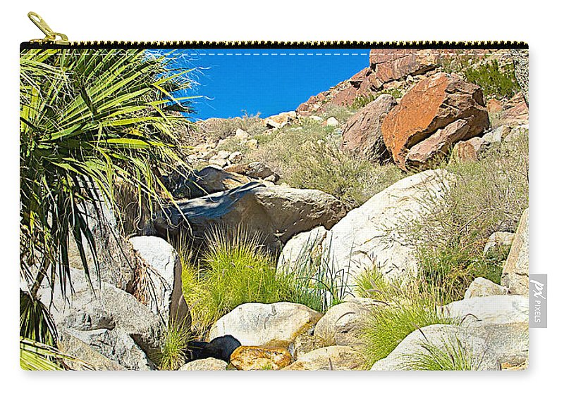 Oasis On Borrego Palm Canyon Trail In Anza-borrego Desert Sp Carry-all Pouch featuring the photograph Oasis On Borrego Palm Canyon Trail In Anza-borrego Desert Sp-ca by Ruth Hager