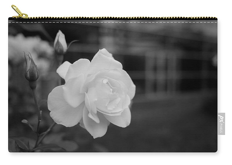 Miguel Carry-all Pouch featuring the photograph Office Roses by Miguel Winterpacht