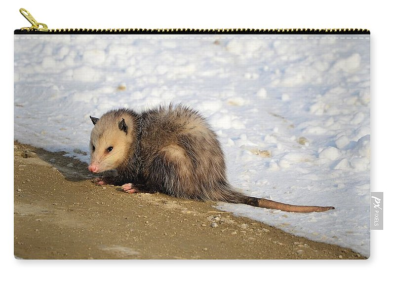 Possum Carry-all Pouch featuring the photograph Oh Possum by Bonfire Photography