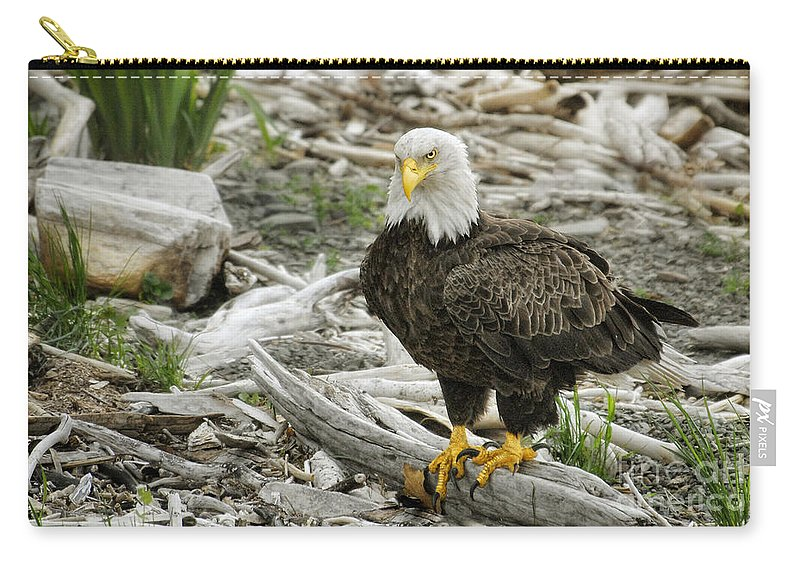 Birds Carry-all Pouch featuring the photograph Oh Really by Claudia Kuhn