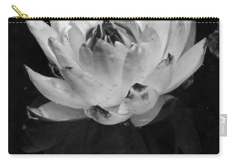 Black And White Carry-all Pouch featuring the photograph Older And Beautiful Bw by Dale Crum