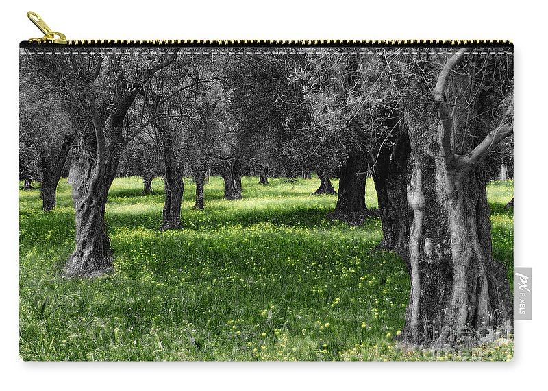 Olive Grove Carry-all Pouch featuring the photograph Olive Grove Italy Cbw by Mike Nellums