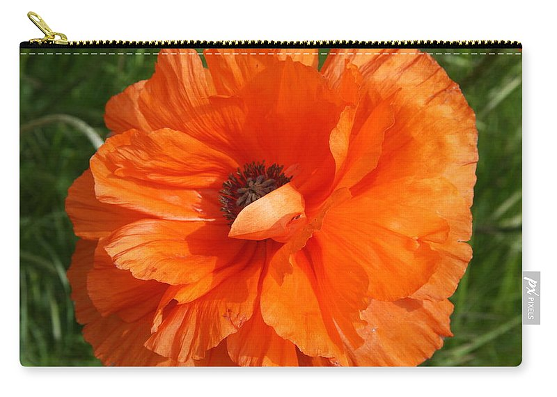 Poppy Carry-all Pouch featuring the photograph Olympia Orange Poppy by Christiane Schulze Art And Photography