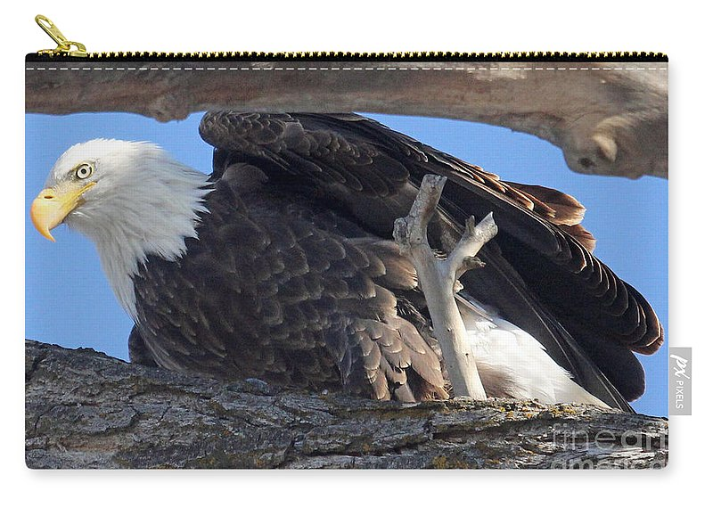 Colorado Carry-all Pouch featuring the photograph On Guard by Bob Hislop