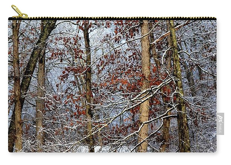 Winter Carry-all Pouch featuring the photograph On Such A Winter's Day by Deena Stoddard