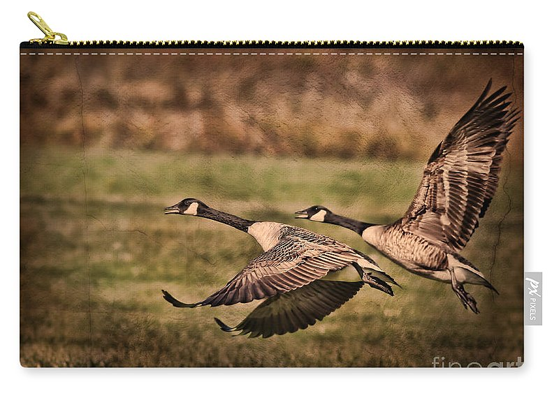 Geese Carry-all Pouch featuring the photograph On Takeoff by Deborah Benoit