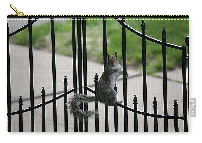Squirrel Carry-all Pouch featuring the photograph On The Fence by Eric Swan