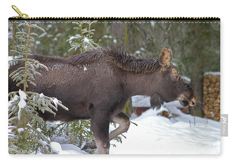 Moose Carry-all Pouch featuring the photograph On The Move by Rick Monyahan