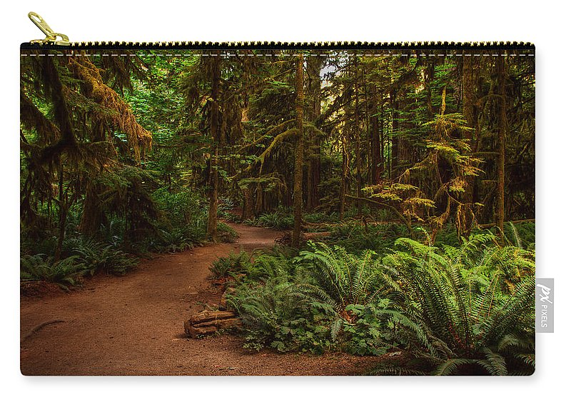 Forest Carry-all Pouch featuring the photograph On The Trail To .... by Randy Hall