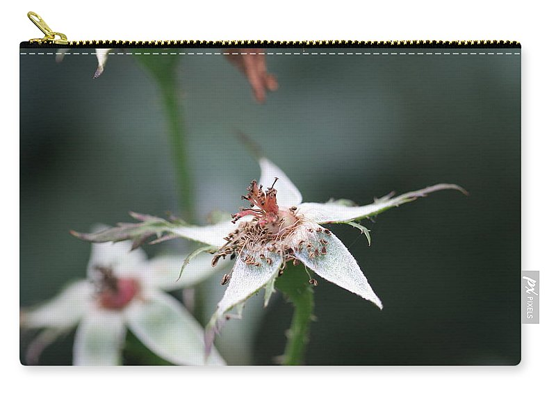 Rose Carry-all Pouch featuring the photograph Once So Vibrant Rose by Valerie Collins