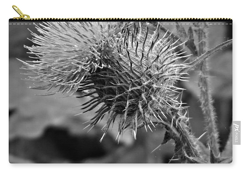 One Bw Carry-all Pouch featuring the photograph One Bw by Chalet Roome-Rigdon