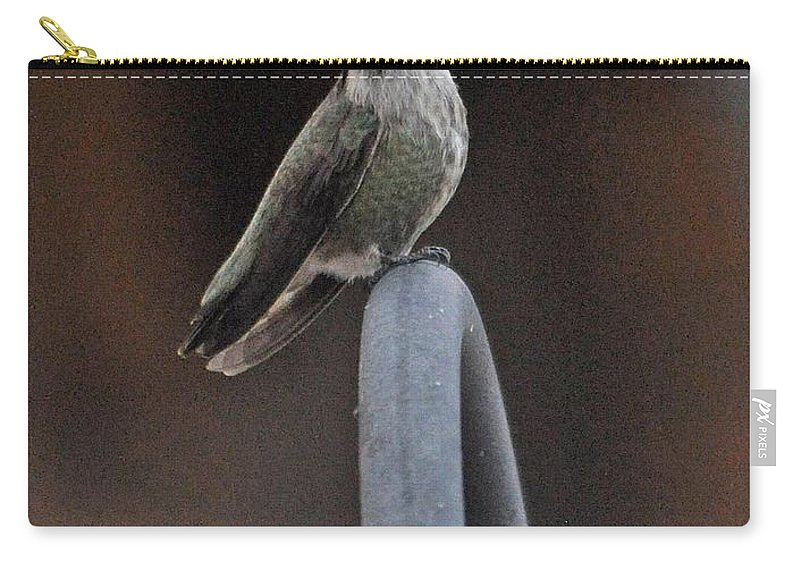 Hummingbird Carry-all Pouch featuring the photograph One Proud Bird by Jay Milo