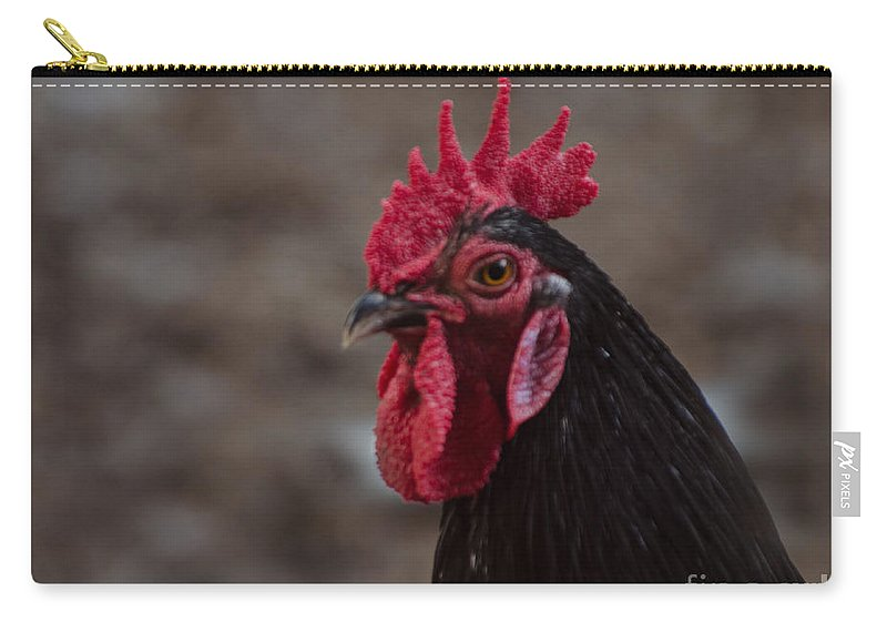 Chicken Carry-all Pouch featuring the photograph Onyx by Donna Brown