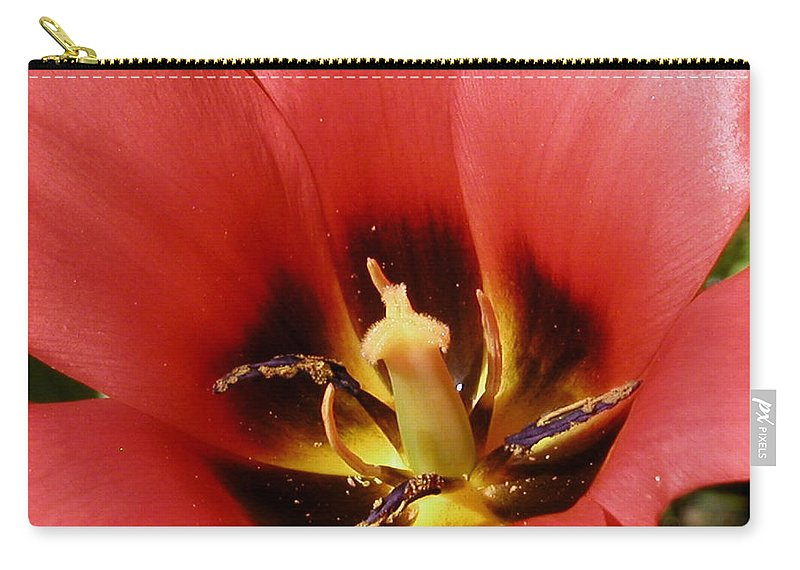 Flower Carry-all Pouch featuring the photograph Open To Show by Karol Livote