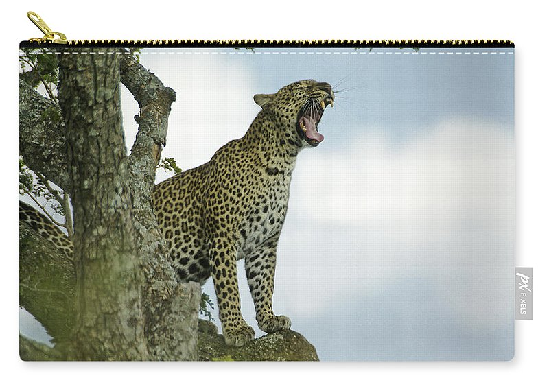 Africa Carry-all Pouch featuring the photograph Open Wide by Michele Burgess