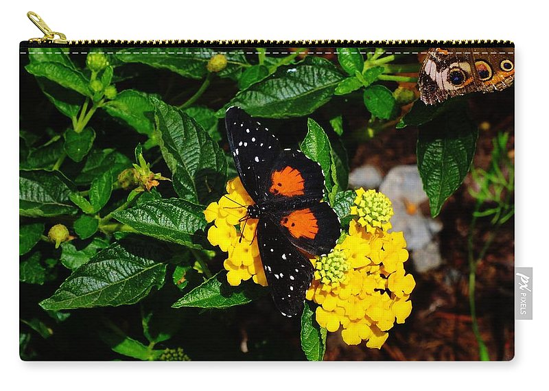 Orange And Black Carry-all Pouch featuring the photograph Orange And Black Butterfly by Scenic Sights By Tara