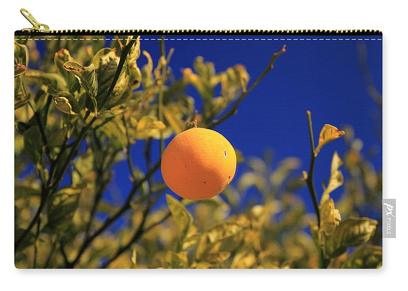 Orange Trees Carry-all Pouch featuring the photograph Orange And Blue Sky by Scott Hill