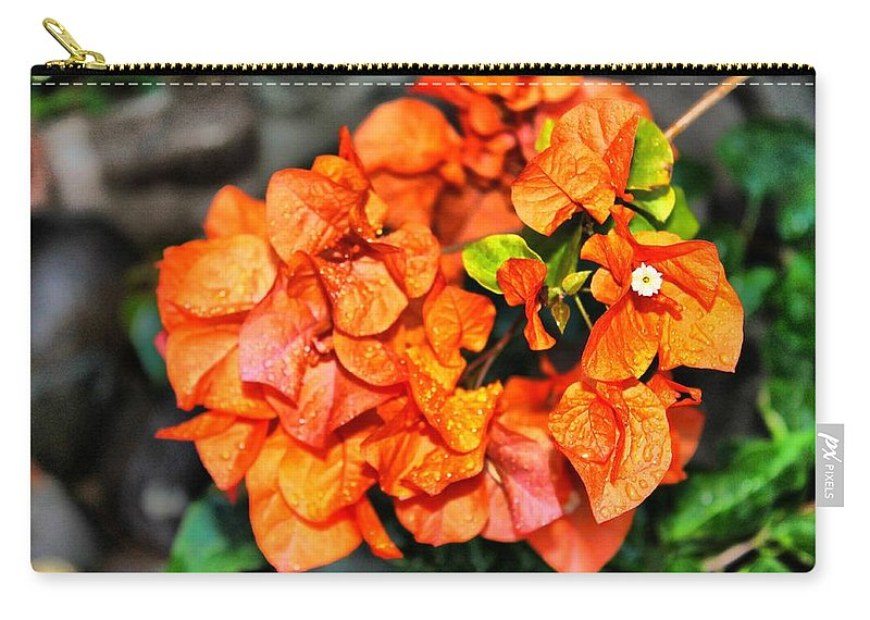 Flowers Carry-all Pouch featuring the photograph Orange Beauty by Debbie Levene