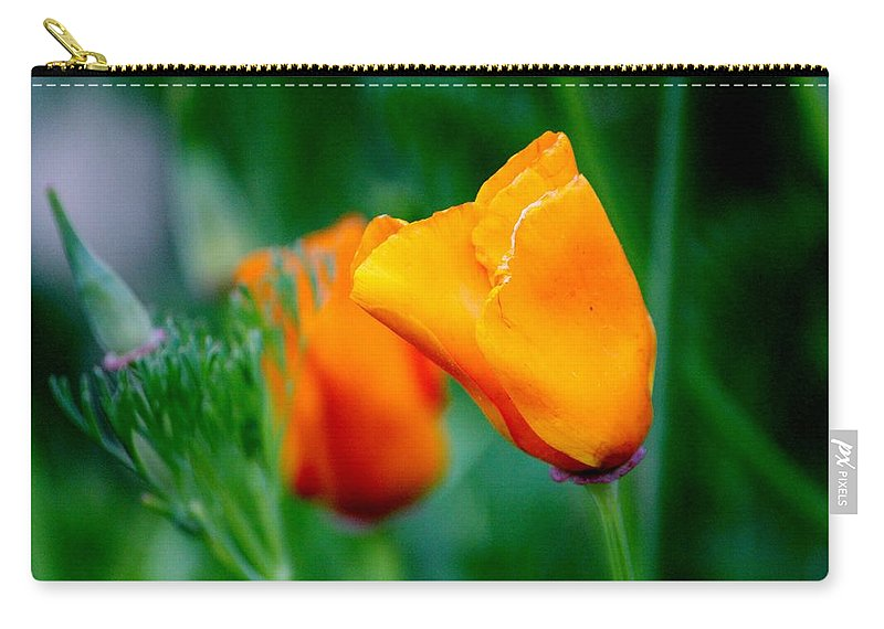 Eschscholzia Californica Carry-all Pouch featuring the photograph Orange California Poppies by Cynthia Guinn