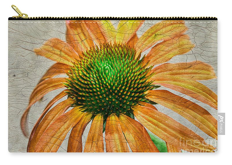 Flower Carry-all Pouch featuring the photograph Orange Crackle by Deborah Benoit