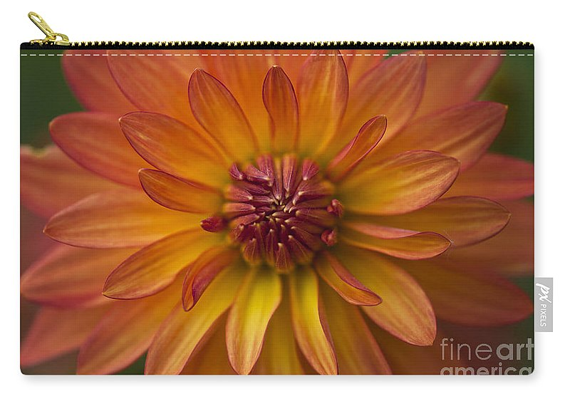 Heiko Carry-all Pouch featuring the photograph Orange Dahlia Blossom by Heiko Koehrer-Wagner