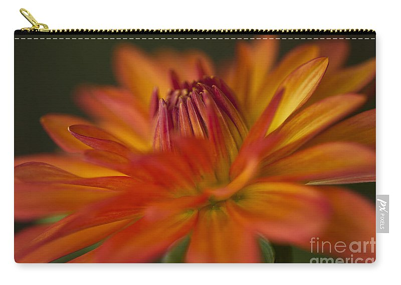 Heiko Carry-all Pouch featuring the photograph Orange Dahlia by Heiko Koehrer-Wagner