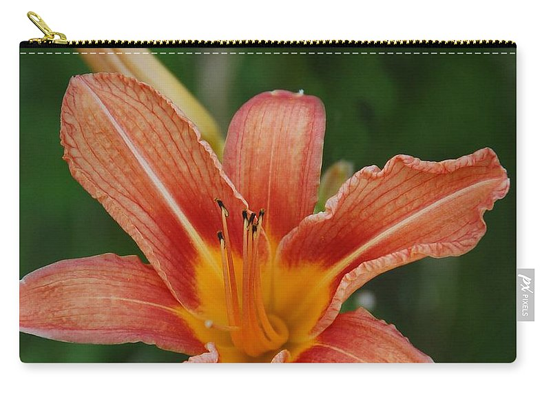 Lily Carry-all Pouch featuring the photograph Orange Day Lily by Valerie Kirkwood
