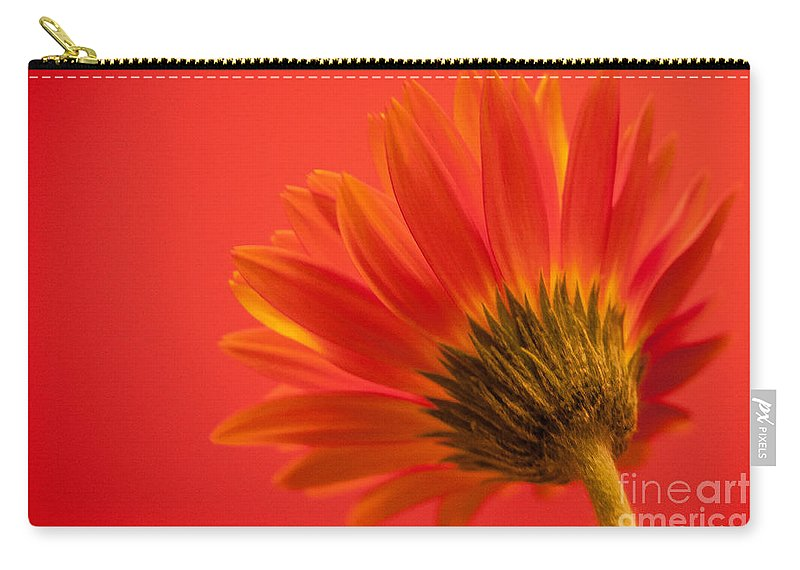 Flower Carry-all Pouch featuring the photograph Orange Delight by Bianca Nadeau
