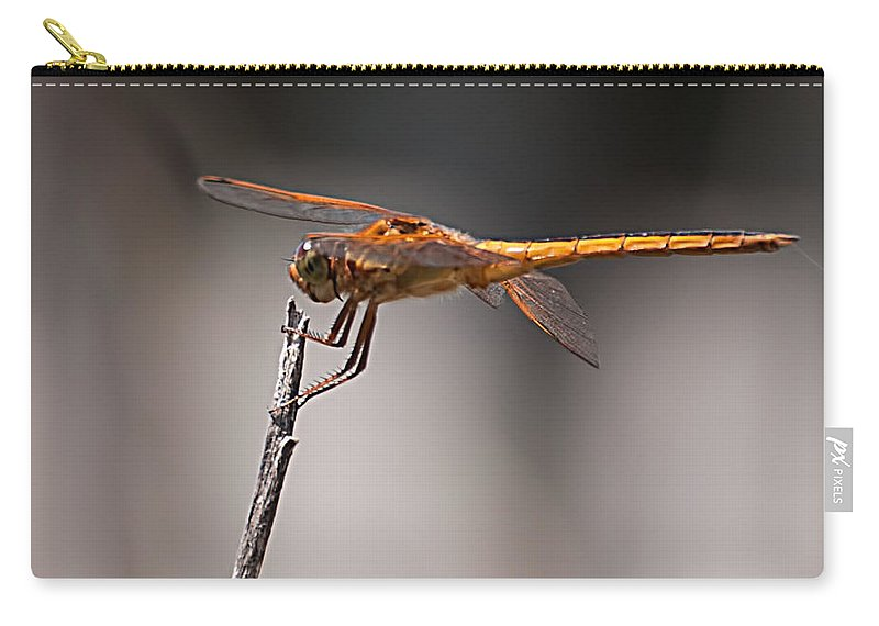 Orange Carry-all Pouch featuring the photograph Orange Dragonfly by Photos By Cassandra