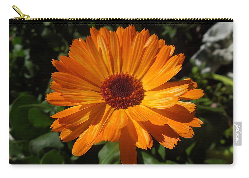 Orange Flower Carry-all Pouch featuring the photograph Orange Flower In The Garden by Donna Jackson