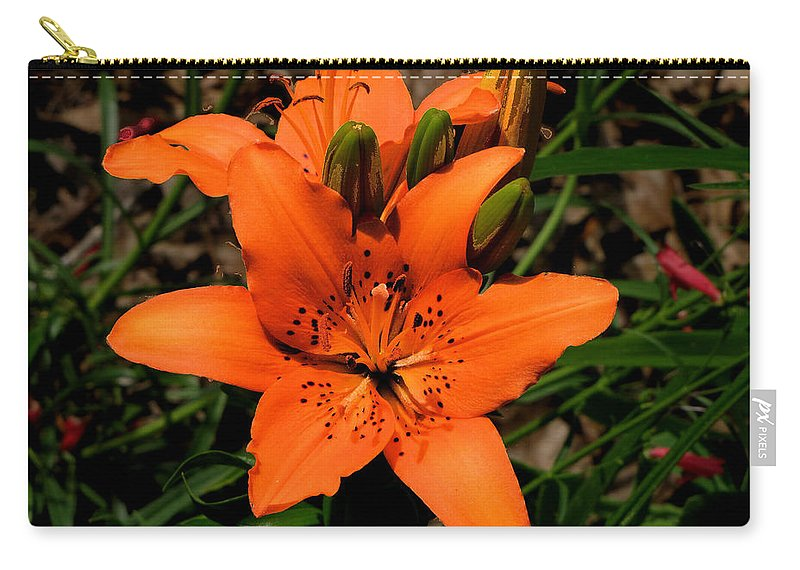 Orange Carry-all Pouch featuring the photograph Orange Lily by C H Apperson