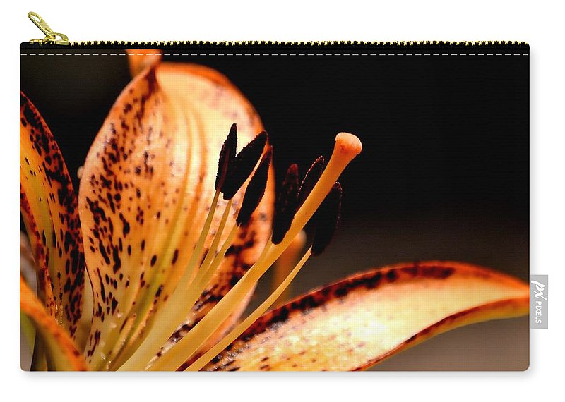 Lily Carry-all Pouch featuring the photograph Orange Lily by Deena Stoddard