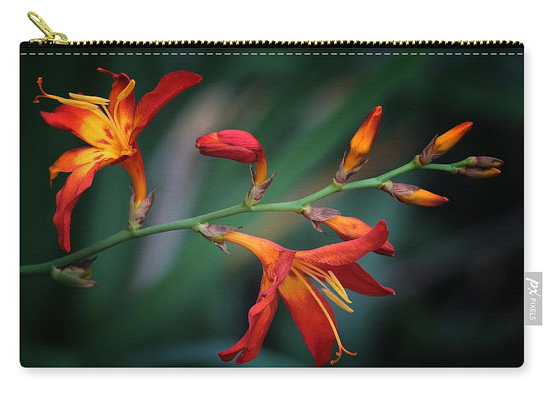 Lily Carry-all Pouch featuring the photograph Orange Lily by Lucy VanSwearingen