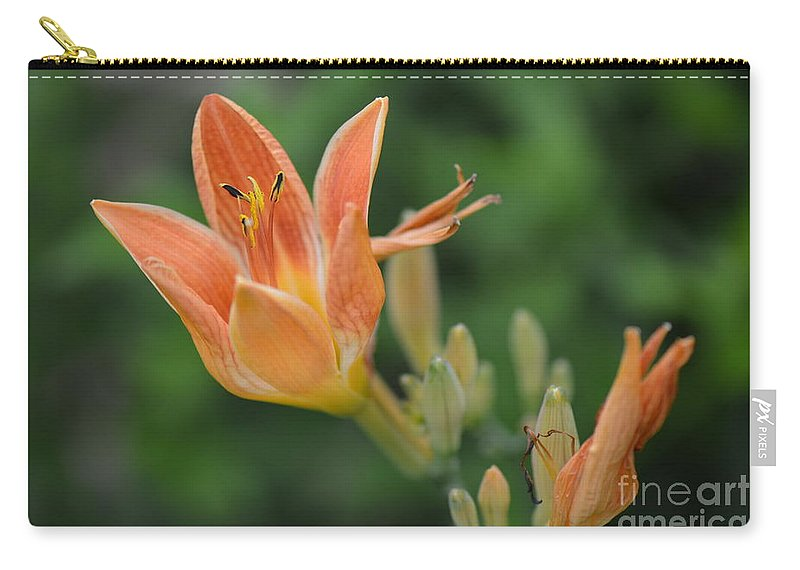 Honey Carry-all Pouch featuring the photograph Orange Lily Photo 2 by Barb Dalton