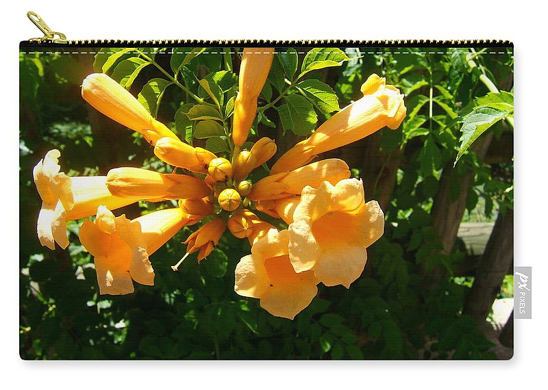 Trumpet Vine Carry-all Pouch featuring the photograph Orange Trumpets by Elaine Duras