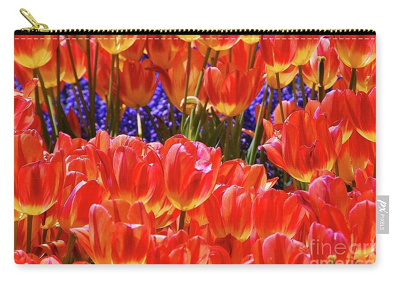 Orange Tulips Carry-all Pouch featuring the photograph Orange Tulips by Allen Beatty