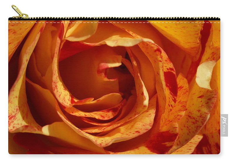 Orange Carry-all Pouch featuring the photograph Orange Variegated Rose by Jacklyn Duryea Fraizer