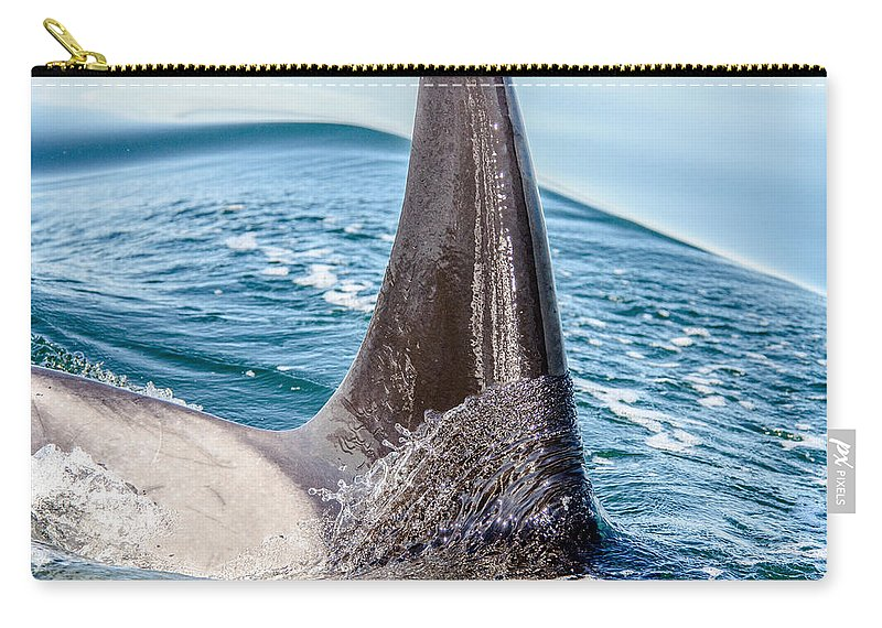 Orca Carry-all Pouch featuring the photograph Orca Apex II by Roxy Hurtubise