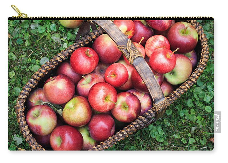 Food Carry-all Pouch featuring the photograph Orchard Fresh Picked Apples by Edward Fielding