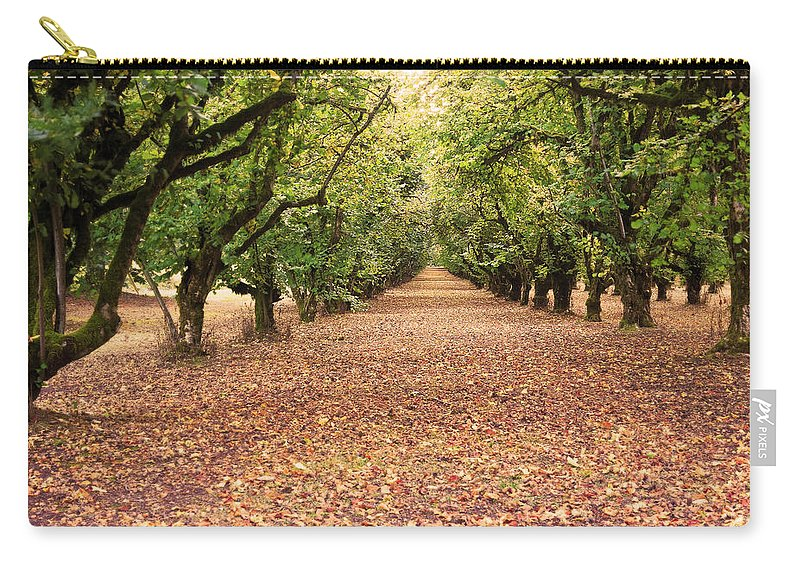 Orchard Carry-all Pouch featuring the photograph Orchard In The Morning by Belinda Greb