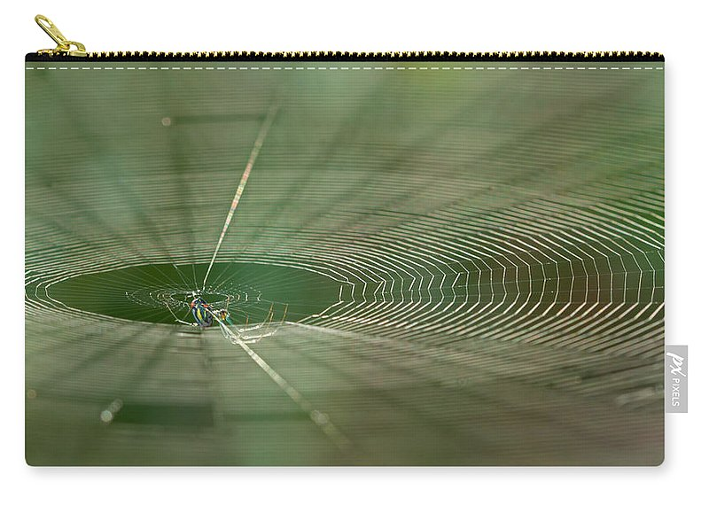 Spider Carry-all Pouch featuring the photograph Orchard Orbweaver #2 by Paul Rebmann