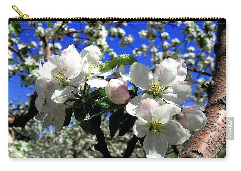 Apple Blossoms Carry-all Pouch featuring the photograph Orchard Ovation by Will Borden