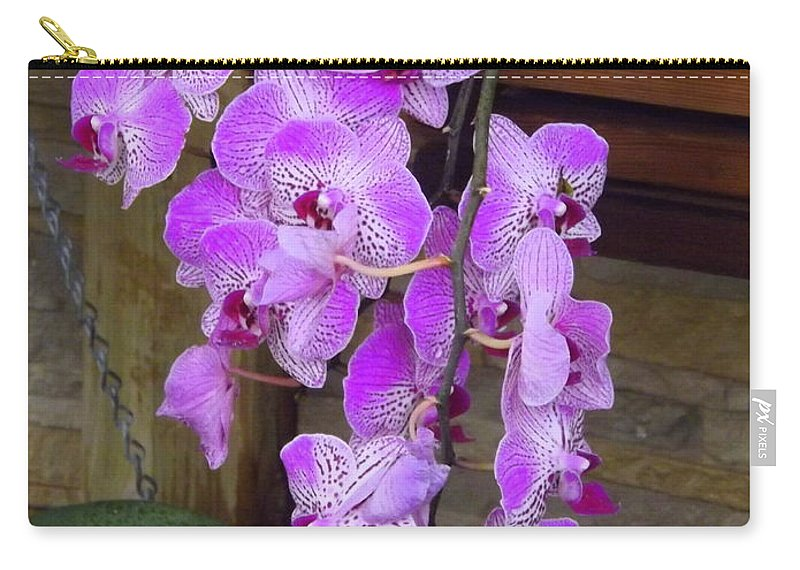 Orchid Carry-all Pouch featuring the photograph Orchid Beauties by Lingfai Leung