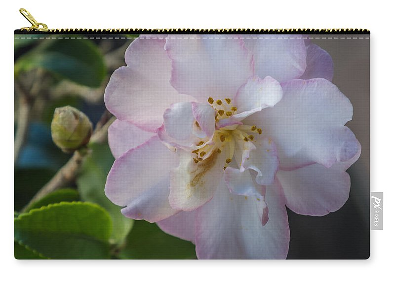 Flower Carry-all Pouch featuring the photograph Orchid Camellia by Jane Luxton