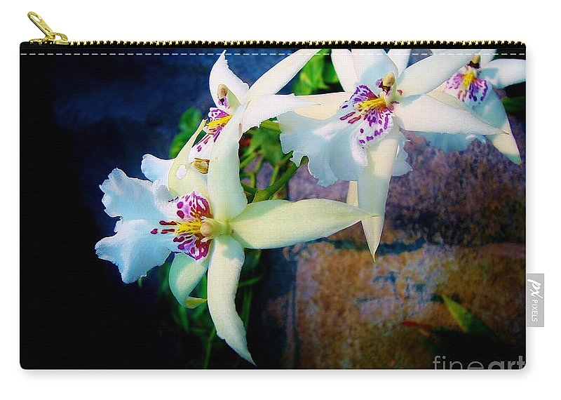 Orchids Carry-all Pouch featuring the photograph Orchid Cascade by Marcia Breznay