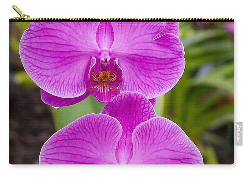 Flowers Carry-all Pouch featuring the photograph Orchid by Jim Thompson