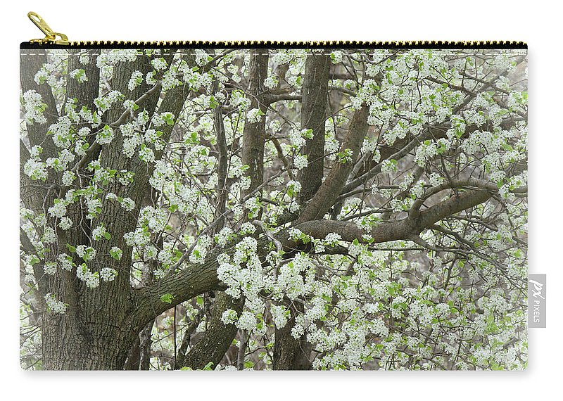 Pear Tree Carry-all Pouch featuring the photograph Oriental Pear Tree by Bonnie Willis