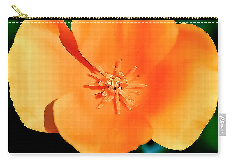 Original Carry-all Pouch featuring the painting Original Digital Painting Of The California Poppy by Bob and Nadine Johnston