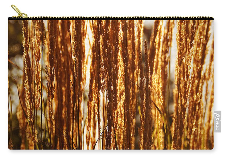 Ornamental Carry-all Pouch featuring the photograph Ornamental Golden Grass by Mick Anderson